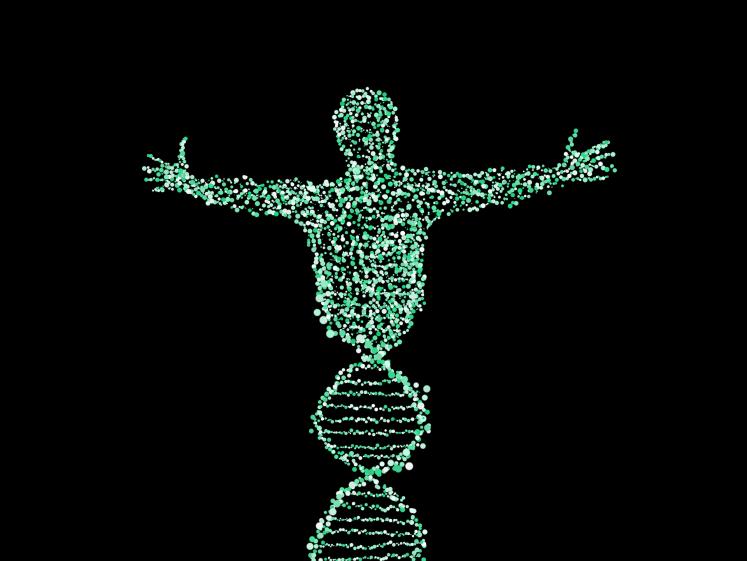 DNA upgrade