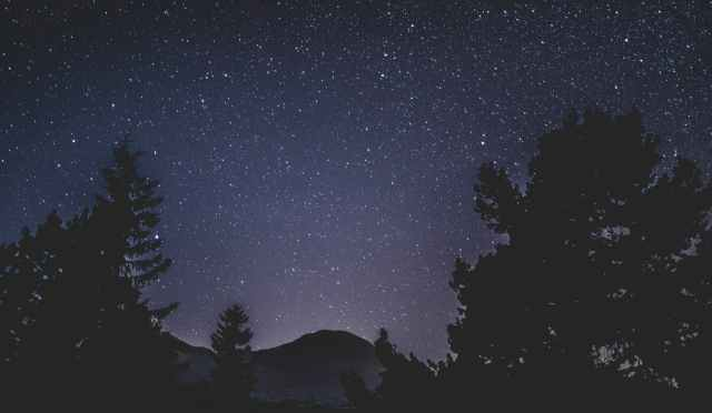 starry night sky and silhouette of trees and mountain
